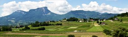 Savoie and Bugey