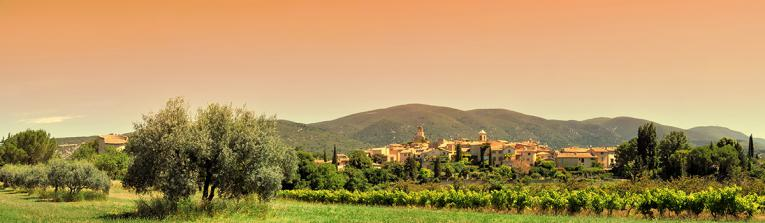 Buy wines from Provence, France