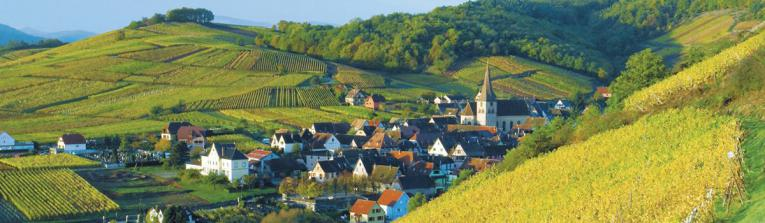 Buy wines from Alsace, France