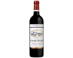 Château Chasse-Spleen - Château Chasse-Spleen - 2012 - Rouge