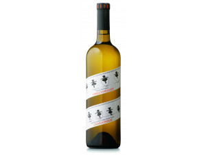 Director's cut - chardonnay - FRANCIS FORD COPPOLA WINERY - 2017 - white